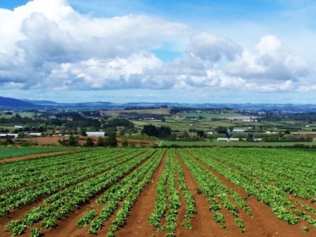 politica agricola comune 2014