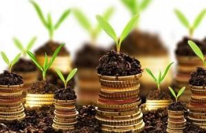 start up sostenibili