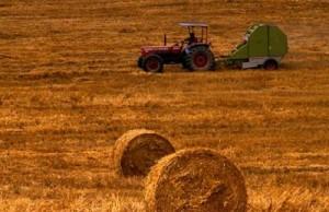 piano agricolo nazionale