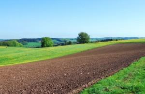 Finanziamenti per acquisto terreno agricolo